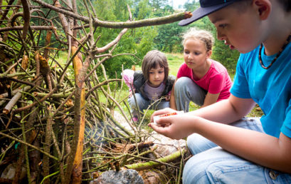 Forest School First Aid